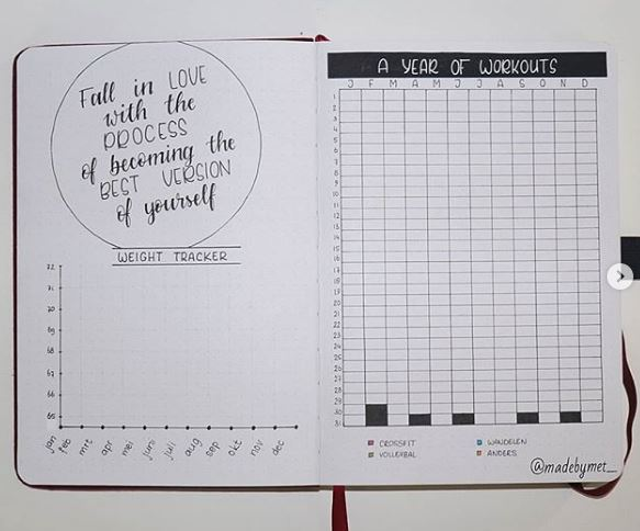 weight tracker ideas