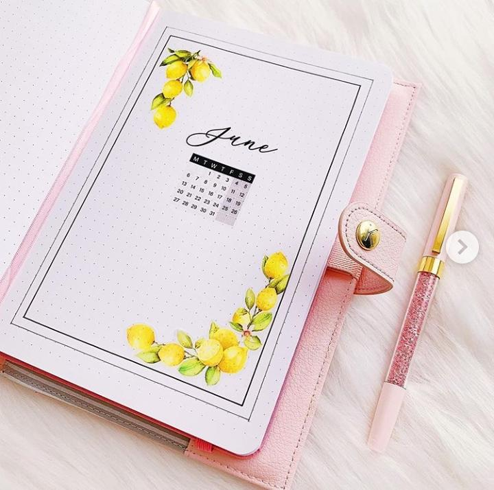 month cover lemon bullet journal