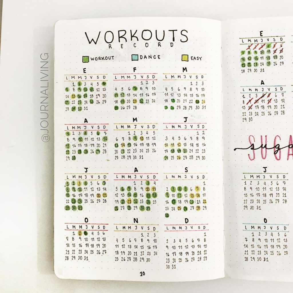 Yearly Fitness Bullet Journal 1