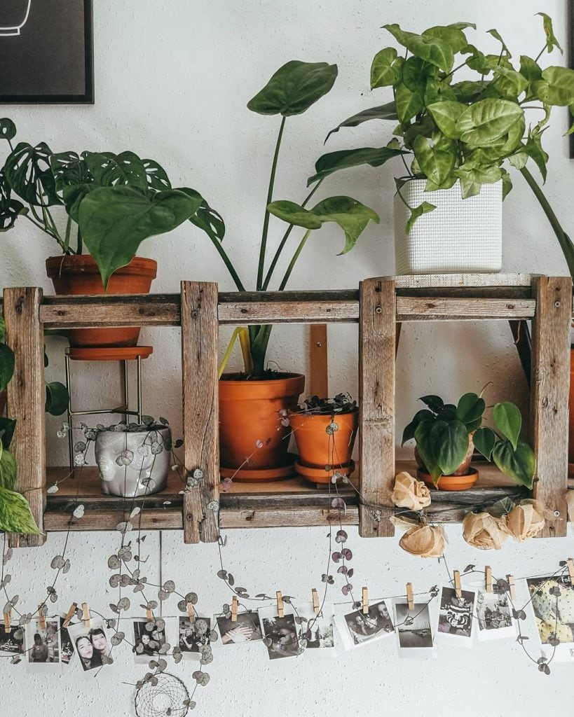 DIY Plant Stand 24