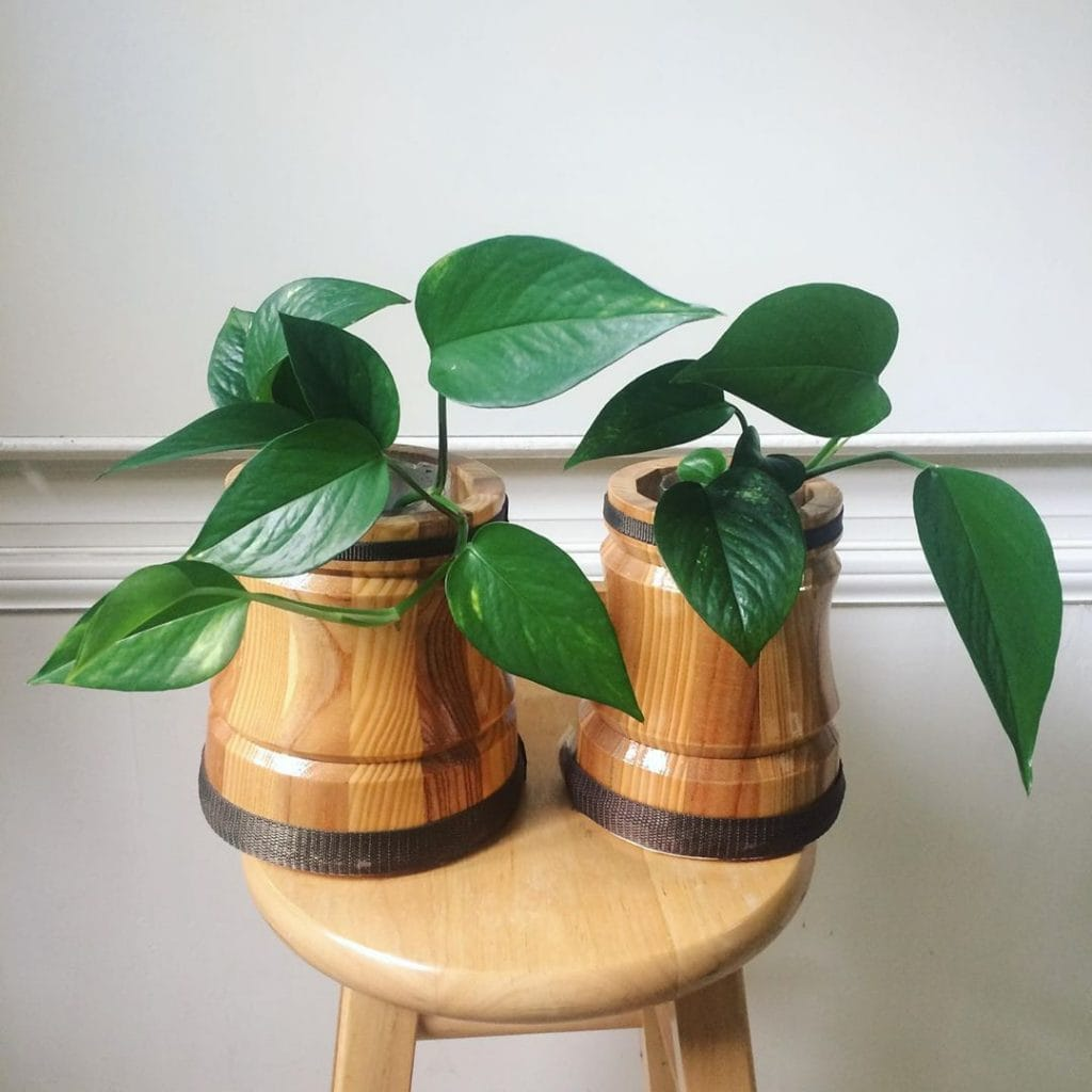 DIY Plant Stand 3