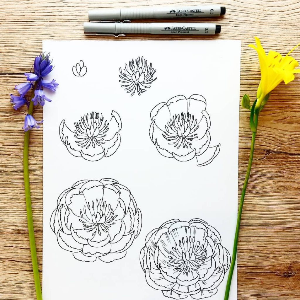 Flower Doodles Of Different Types Of Flowers 15