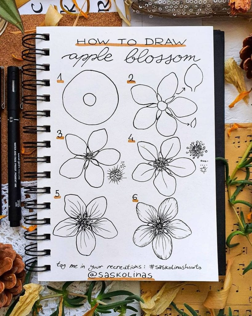 Flower Doodles Of Different Types Of Flowers 2